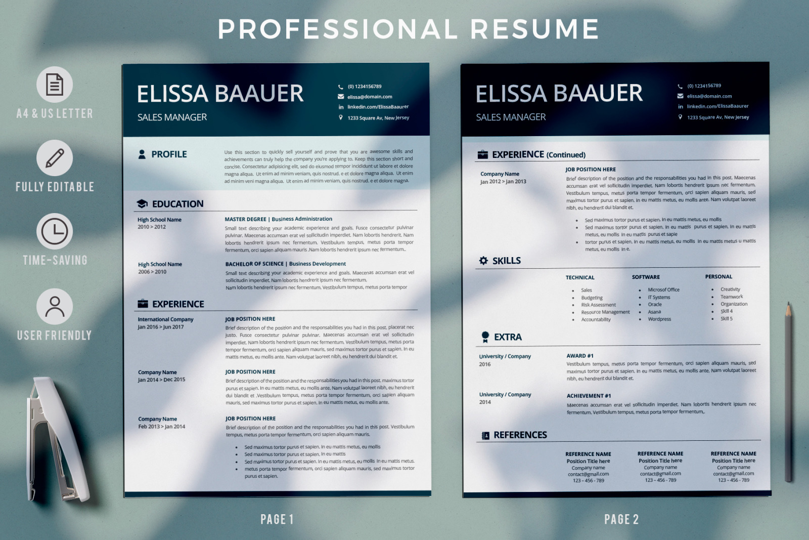 Modern Resume Template Professional Biodata Template For Ms Word