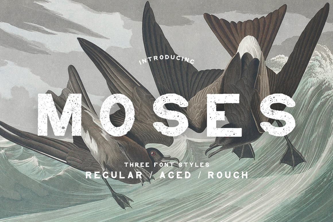 Moses - Display Grotesque Typeface