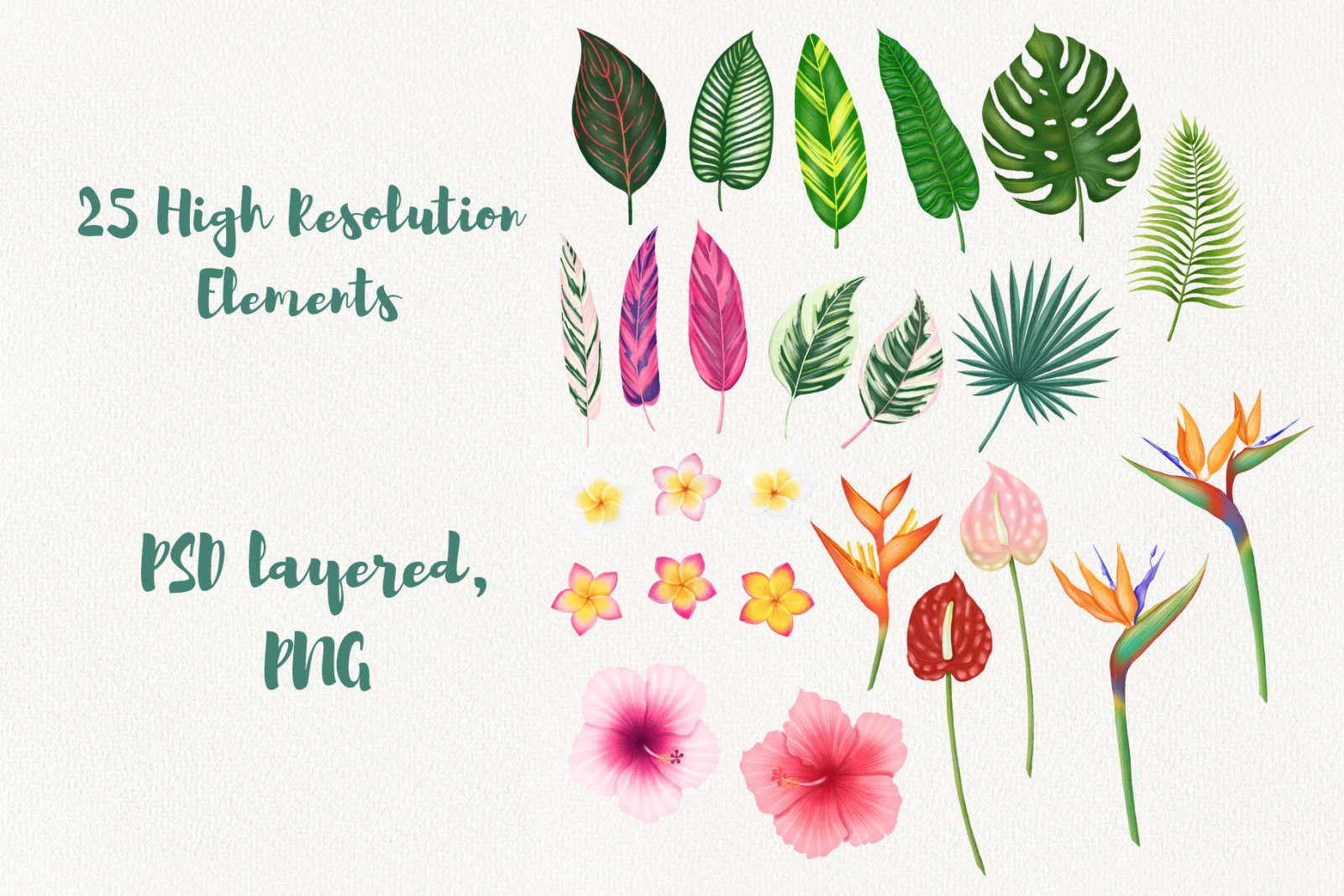 Tropical Leaves And Flowers Clipart In Graphics On Yellow Images Creative Store Free download 39 best quality tropical flower clipart at getdrawings. tropical leaves and flowers clipart in