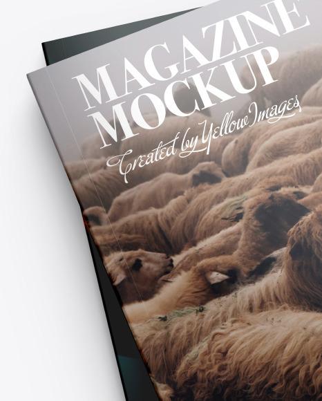 Two Magazines Mockup