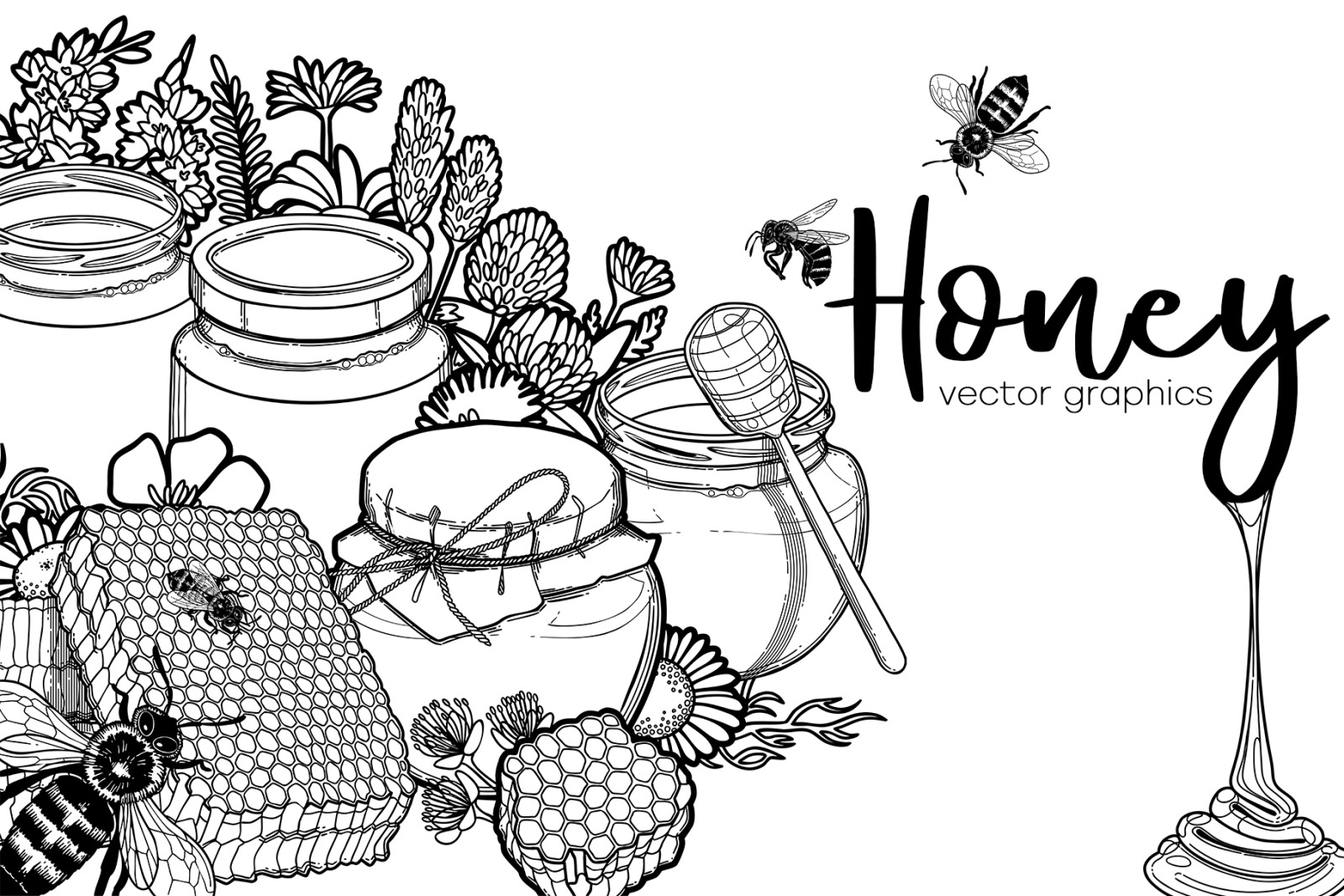 Graphic honey - vector collection