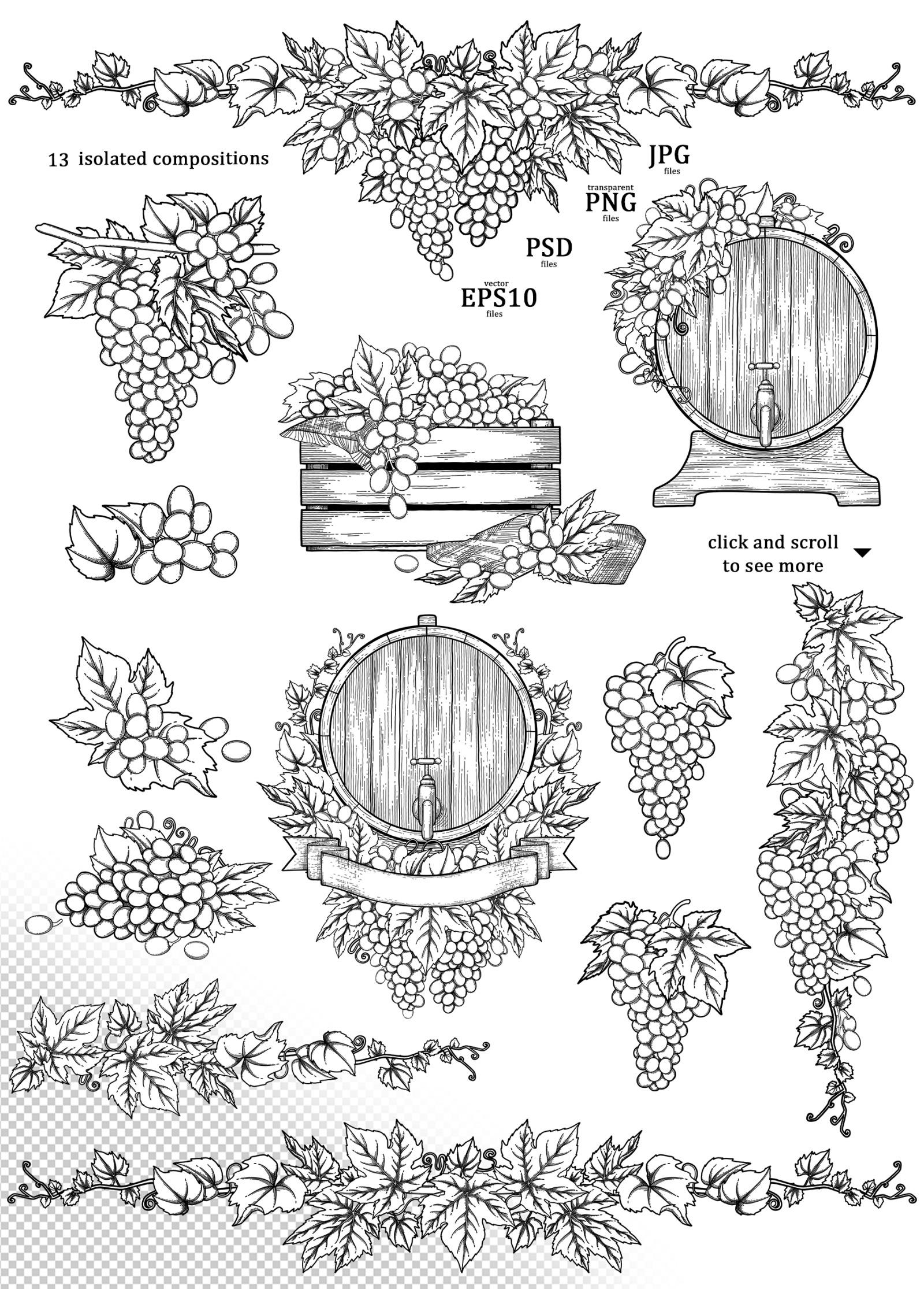 Grapes - vector graphics