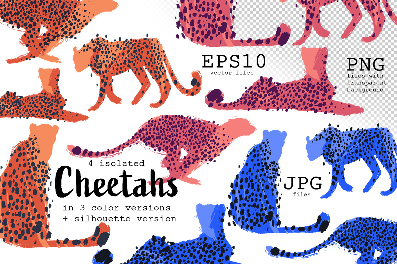 Vector cheetahs