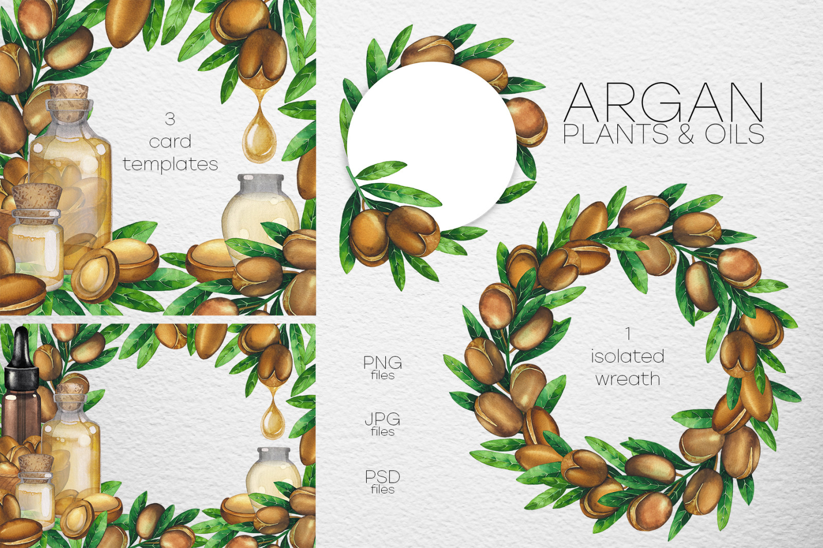 Watercolor argan plants and oils