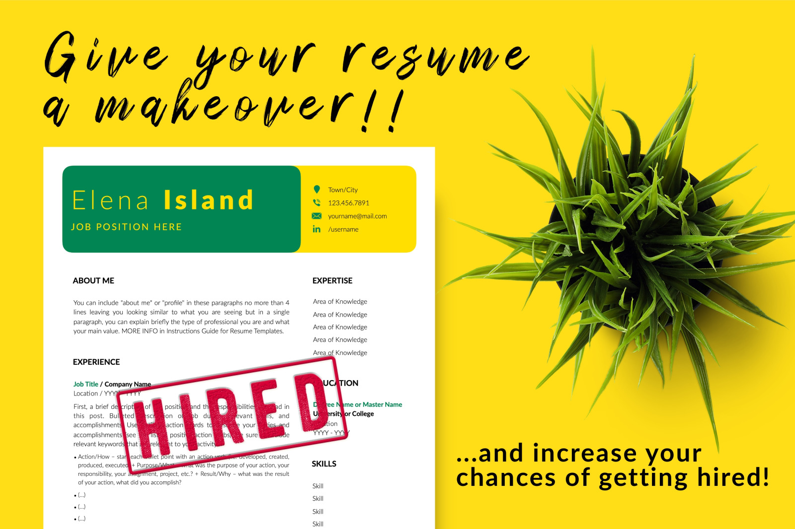 Creative Resume Template for Microsoft Word & Apple Pages // Elena Island CV Design Template