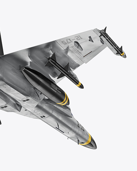 Combat Fighter - Back Half Side View (Hero Shot)