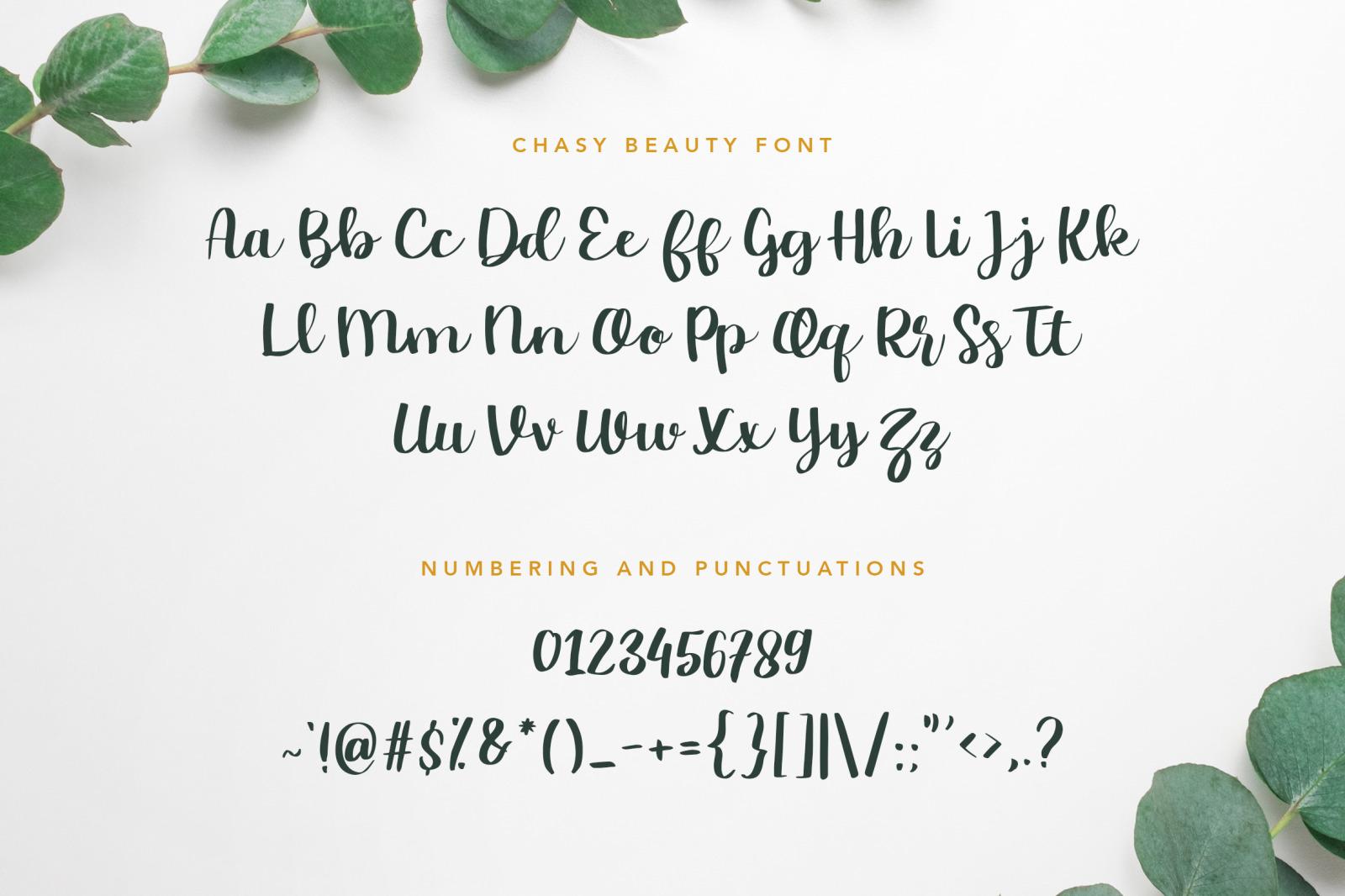 Chasy Beauty Script Font