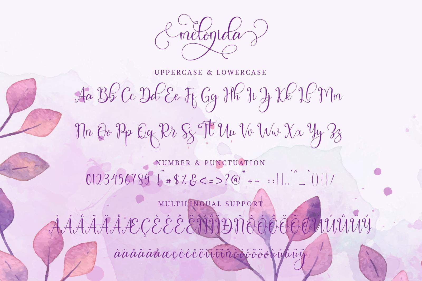 Melonida || Lovely Script Font