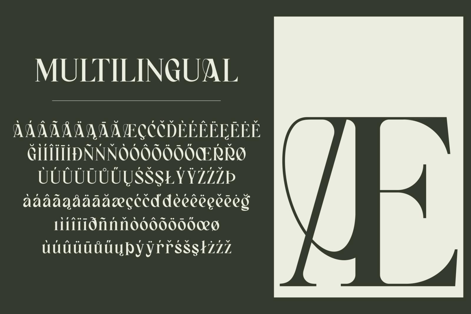 Bagerich Elegant Font