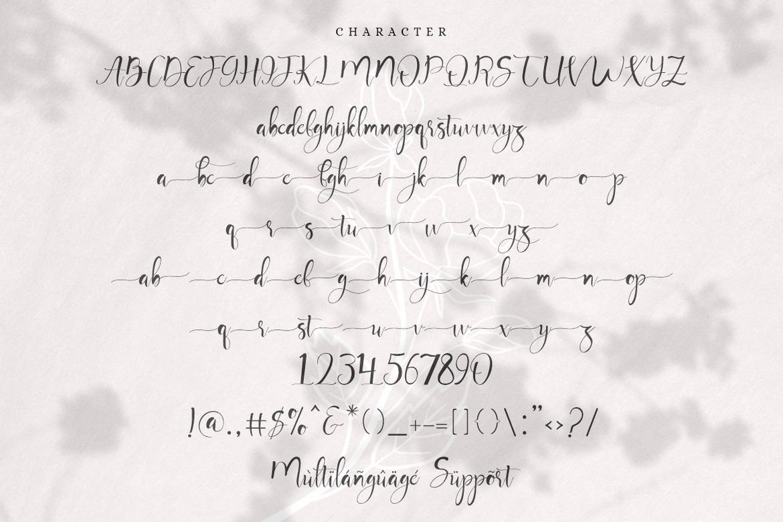 Mayla - Beautiful Handwritting Script Font