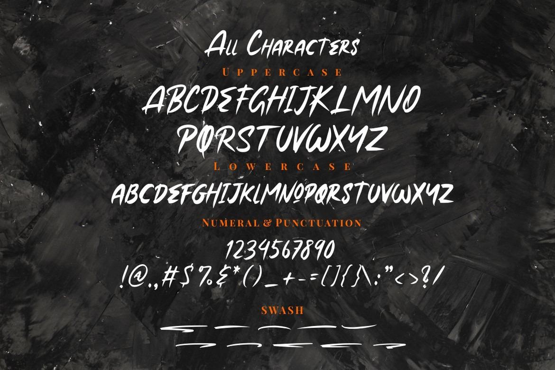 Roxer - Handbrush Font