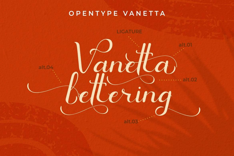 Vanetta - Modern Script Font