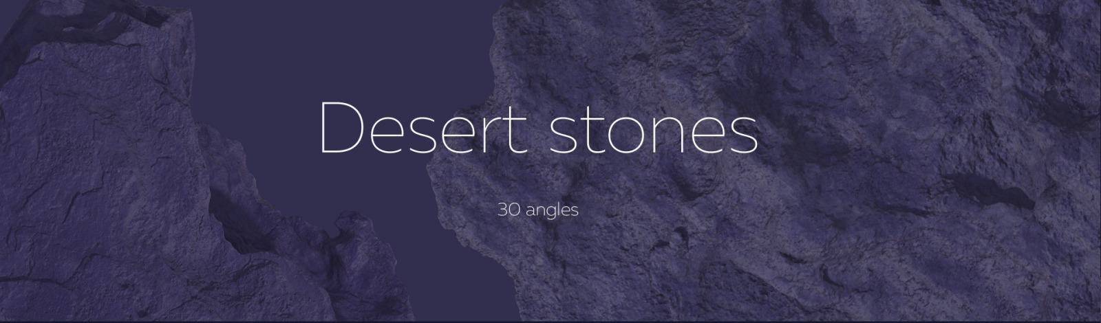 Night Arizona #02, 465 cactus and rock mockups + 70 patterns