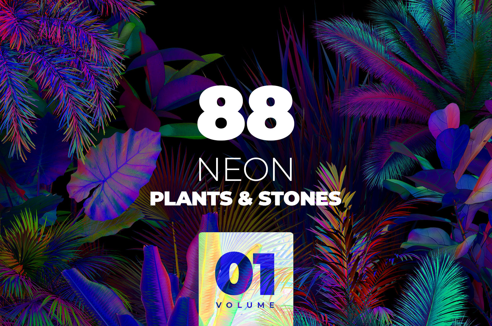 NEON plants & stones collection #01