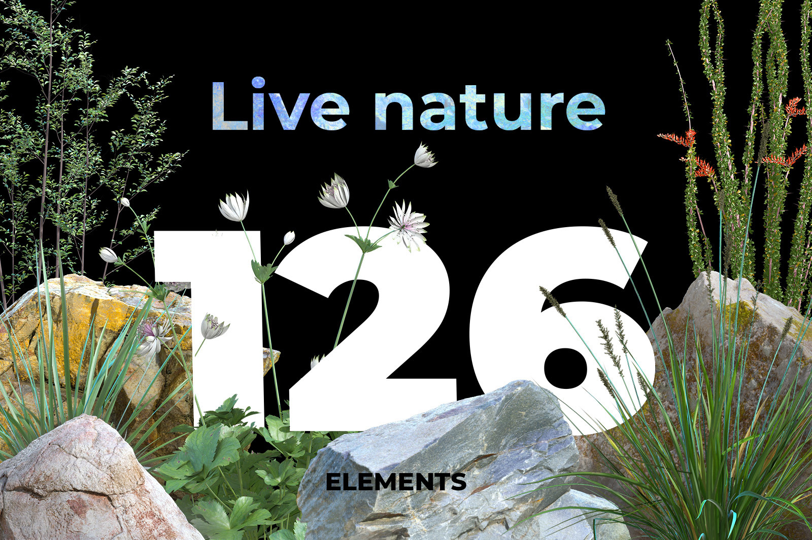 Live nature collection #02