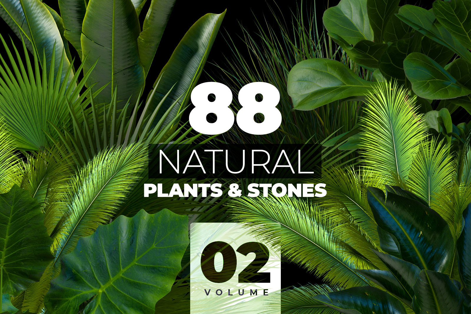 NATURAL plants & stones collection #02